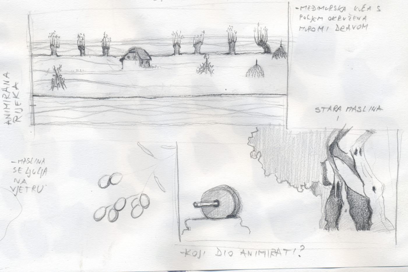 lado sketch olive island